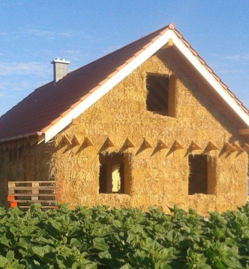 Dom v slnečnici
